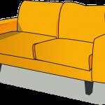 Po soutěži na gauč? …malá ochutnávka z teorie o regeneraci