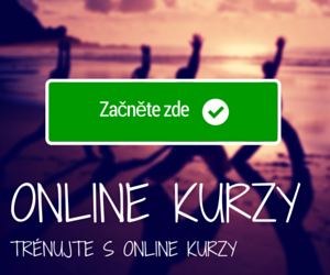 Online kurzy - karate, sbeobrana a motivace