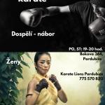 Fighting & karate – přijďte si zacvičit ;-)